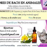 Las flores de bach en animales.