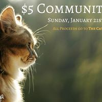 5 Community Class benefiting The Cat House