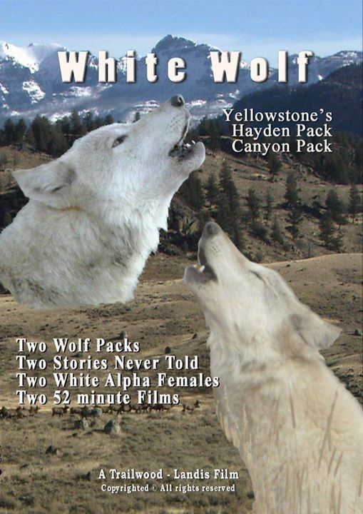 White Wolf Canyon Pack