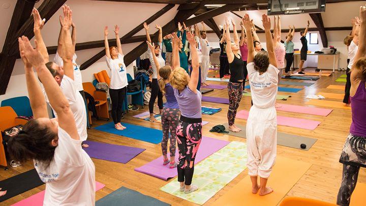 Meunarodni dan joge u Varadinu