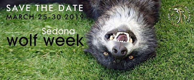 Sedona Wolf Week