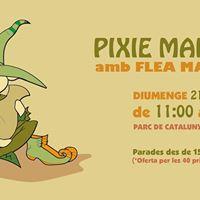 Pixie Market 2