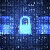 The Future of Cyber Warfare