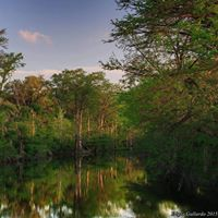 McKinney Falls State Park - Texas Parks and Wildlife