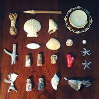 Orculo Cigano com Conchas