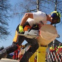 12th Alpen-Adria Olympics in Forestry Skills