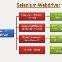 Using Selenium for Automation Testion
