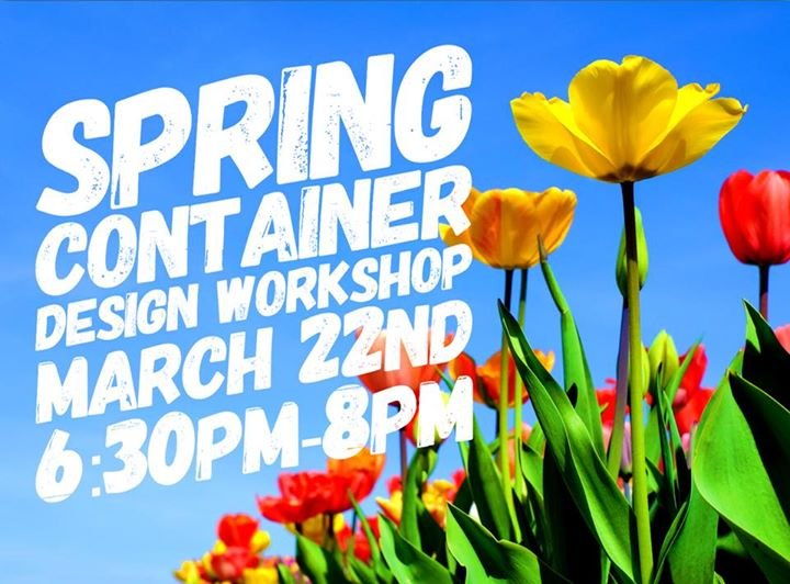 spring container design workshop - Seecontainerhuser Wa