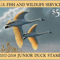 Junior Duck Stamp Day