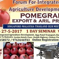 Pomegranate Export &amp Processing Business