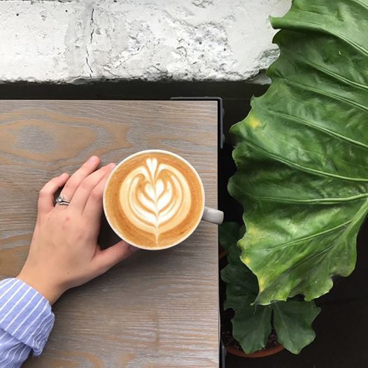 Pouring the Perfect Heart The Barista Secret to Latte Art