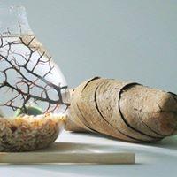 Water Terrarium Workshop