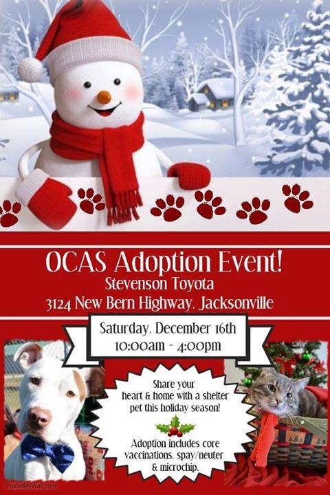 OCAS/Stevenson Toyota Adoption Event