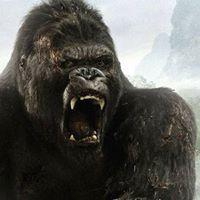 King Kong Exhibition