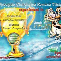 Timisoara Winter Shows