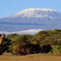 6 -Days Mt. Kilimanjaro Lemosho_Mweka Traverse 21-28th August