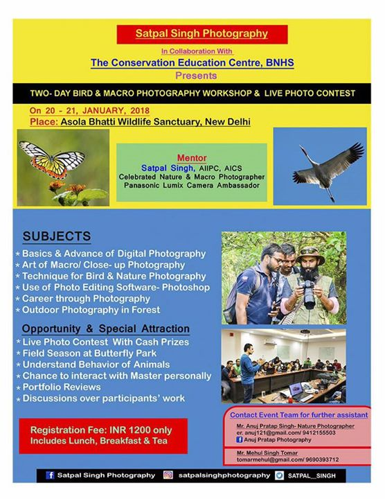 TWO-DAY BIRD & MACRO PHOTOGRAPHY WORKSHOP & LIVE PHOTO CONTEST