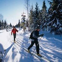 Crosscountry Skiing: What to Wear | REI Expert Advice