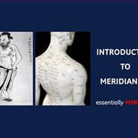 Introduction to Meridian101