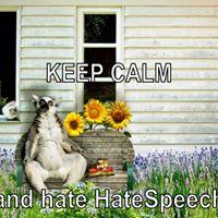 Keep calm and hate HateSpeech - Workshop