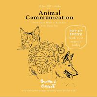 Animal Communication Pop Up Event with Elaine Tan