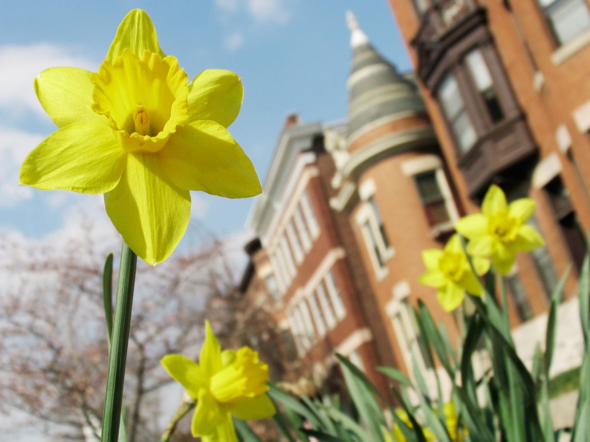 Visit Maryland Spring 2019 - Health Care Law & Policy