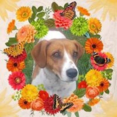 Herkimer County Humane Society