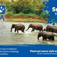 USPCA Trek Sri Lanka Information and Registration Event