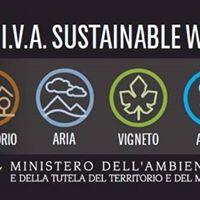 Vino sostenibile azioni concrete per tutelare il nostro futuro