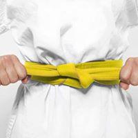 Lean Six Sigma Yellow Belt Certification (WAVE 40)