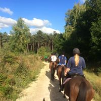 Postgraduate and Staff Horse Riding