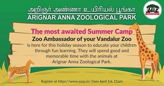 Summer Camp - Zoo Ambassador