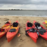 Seal Colony Eco Trip by Kayak