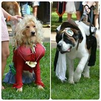 History Hounds Dog Costume Contest
