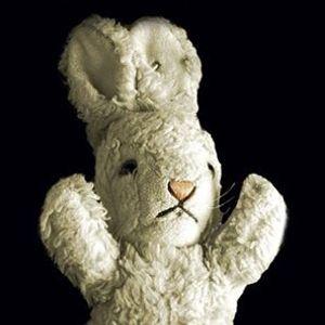 White Rabbit Red RabbitDe Nassim Soleimanpour  Festival END