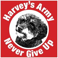Harvey's Army Fundraising