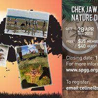 Chek Jawa Nature Discovery Trip