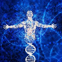 DNA Activation worksop
