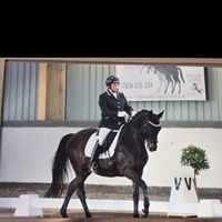 Lindsey Dawes Dressage Clinic at Edwards Equestrian