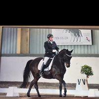 Lindsey Dawes Dressage Clinic at Edwards Equestrian