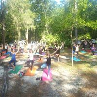 Free Yoga at Devils Millhopper