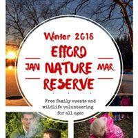 Free family half-term event at Efford Marsh