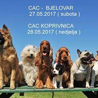 CAC Bjelovar 27.05.2017