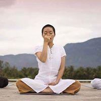 Vibrant Morning Yoga