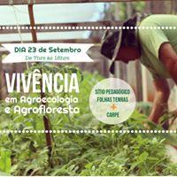 Vivncia Agroecolgica e em Sistemas Agroflorestais (SAF)