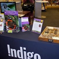 Local Author Signing - Jay Cossey