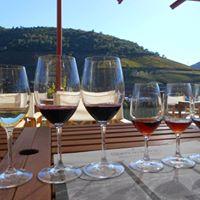 Weinprobe Abseits Des Gewohnten