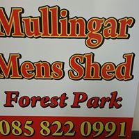 Mullingar Charity Variety Group Culture night