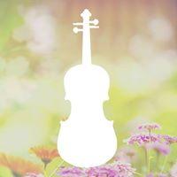 North Coast Strings Summer Concert