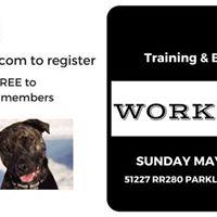 Training &amp Behaviour Workshop